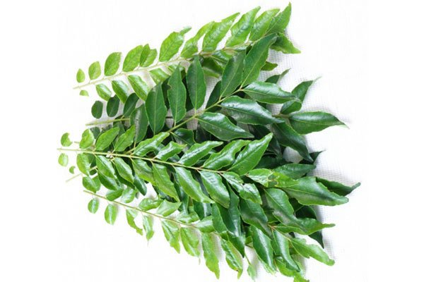 Health Tips- Benefits Of Curry Leaves