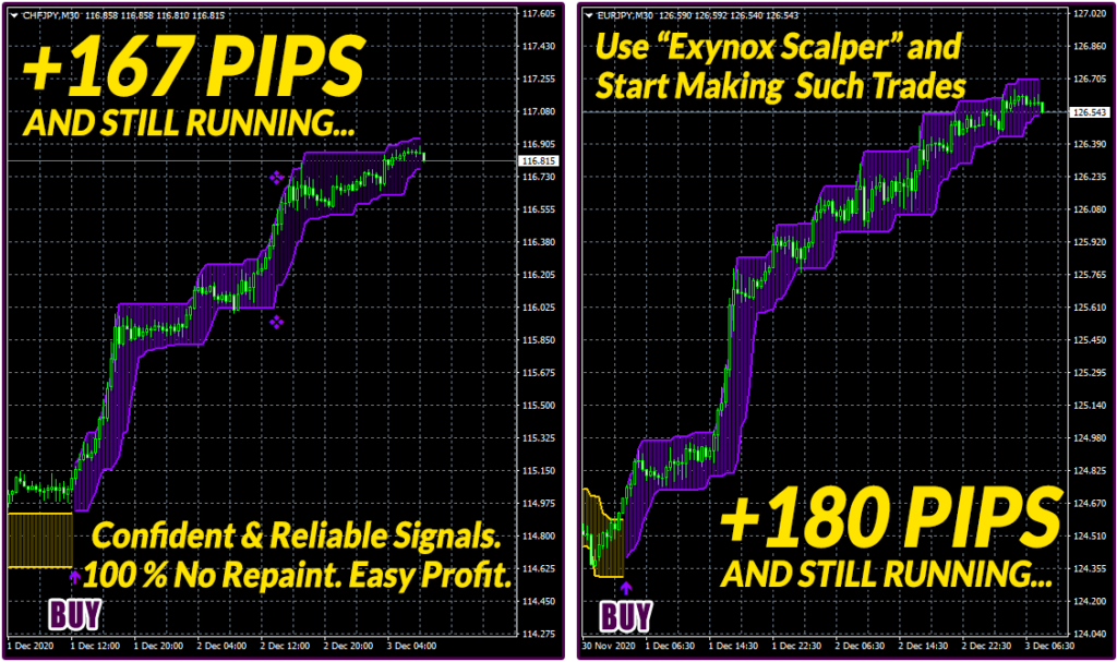 Exynox Scalper